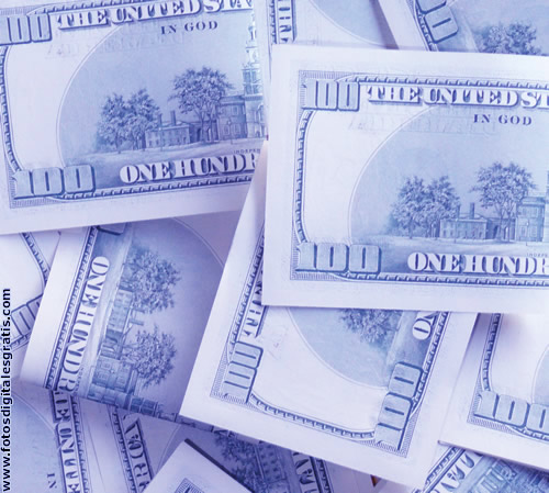 Dolares adquiridos en el mercado informal