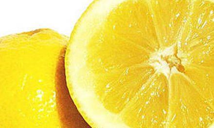 EE.UU. suspendió la importación de limones argentinos