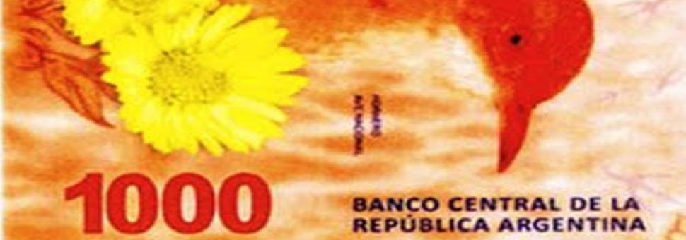 Biillete de 1000 pesos : se lanzaría en Octubre con la figura del hornero