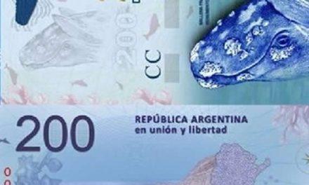 Billetes de 200 : la cantidad de papeles con la imagen de la ballena creció 59%
