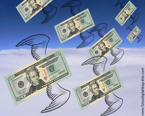 En el último año, salieron del sistema financiero US$ 36.379 millones