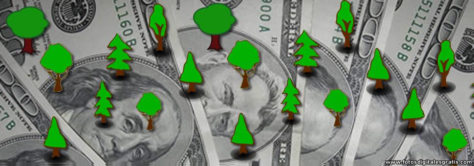 Dólar paraleo : arbolitos vuelven a la calle Florida