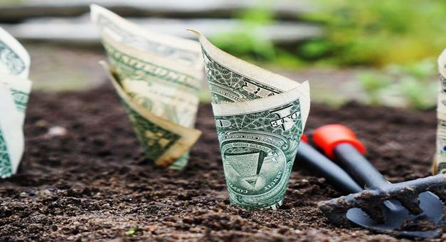 Ganancias en dólares : La bicicleta financiera ya rindió un 10% en dólares